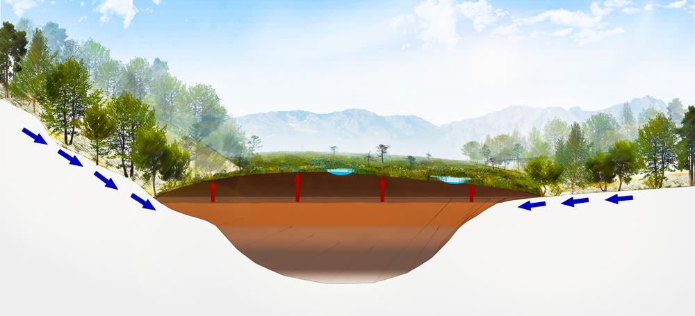 Umweltbildung Hochmoor