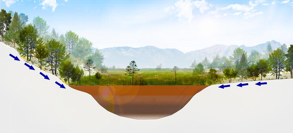 Umweltbildung Niedermoor